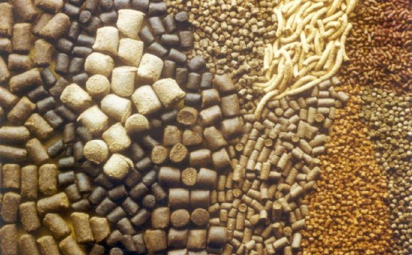 Pet and animal food production