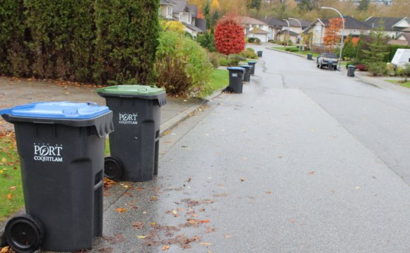 Port-coquitlam-bin-cleaning
