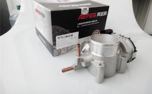 A Paez electronic throttle