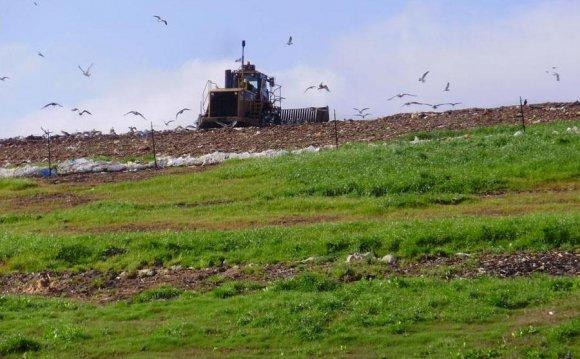 The Perdido Landfill