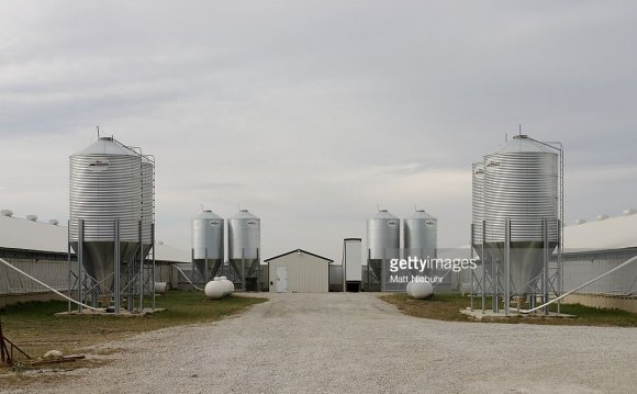 Industrial farm feeding lots