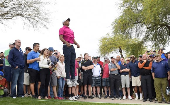 All eyes were on Tiger Woods