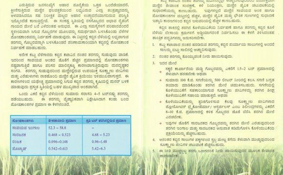 Sugarcane-trash-management-(2)