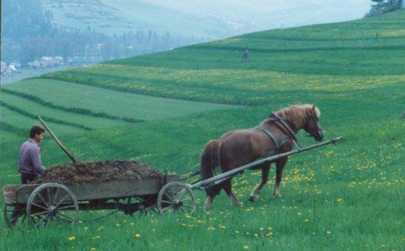 Pre-industrial farming era