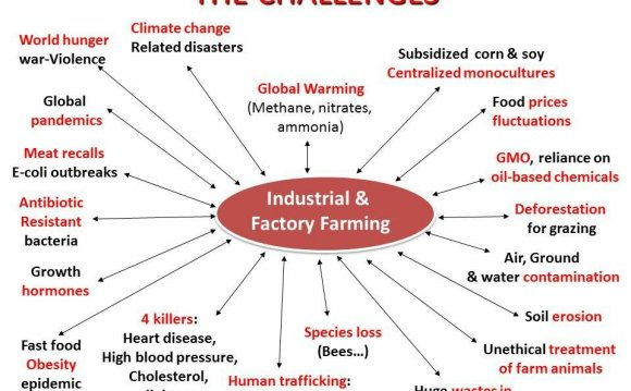 Positive of Factory farming
