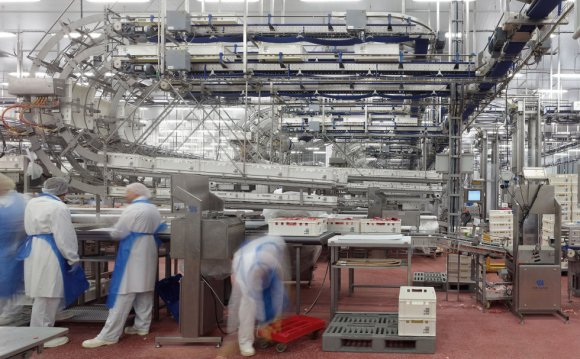 Industrial Meat production