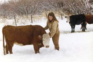 Heather's daughter Andrea, and one of her crossbred Angus-Hereford cows, named Norman
