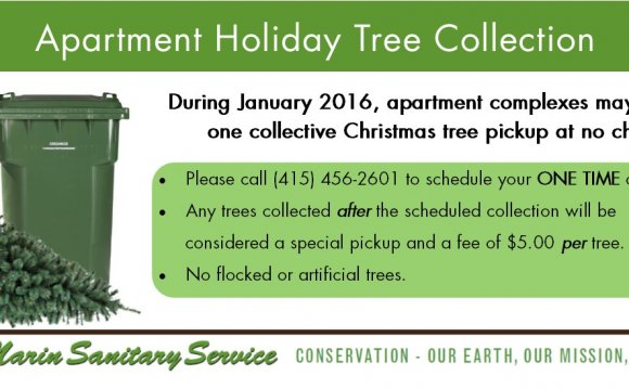Waste Management Christmas tree