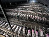 Animals Factory farms