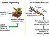 Engineering in Agriculture