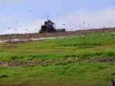 Oak Grove Landfill