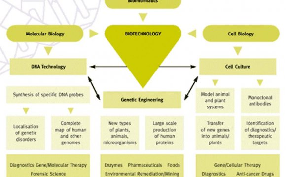 Applications of genetic Engineering in Agriculture