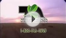 Discover the Advantage of Nebraska Alfalfa