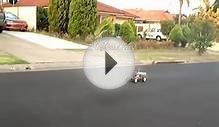 Four stroke rc buggy with saito40 aircraft engine. Part 2