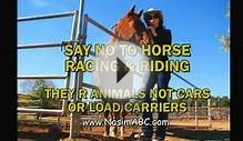 Horses Are Animals Not Livestock