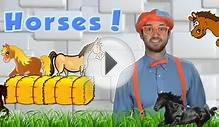 Horses for Children - Learn Farm Animals for Kids. The