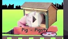 Learn Animals and their Houses Train - learning animal
