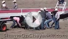 RODEO Animal Abuses, Factory Farms, Horse Slaughter, Baby