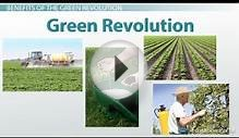 What Is the Green Revolution? - Definition, Benefits, and